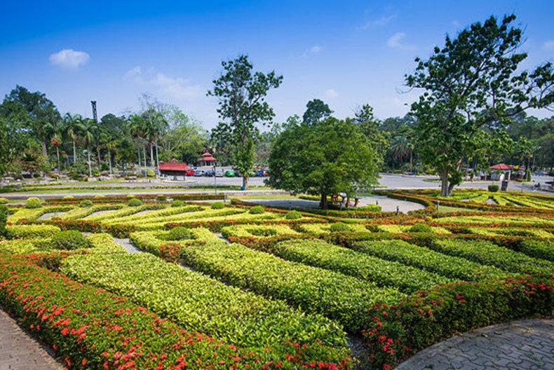 เที่ยวสระบุรีสวนพฤกษศาสตร์พุแค