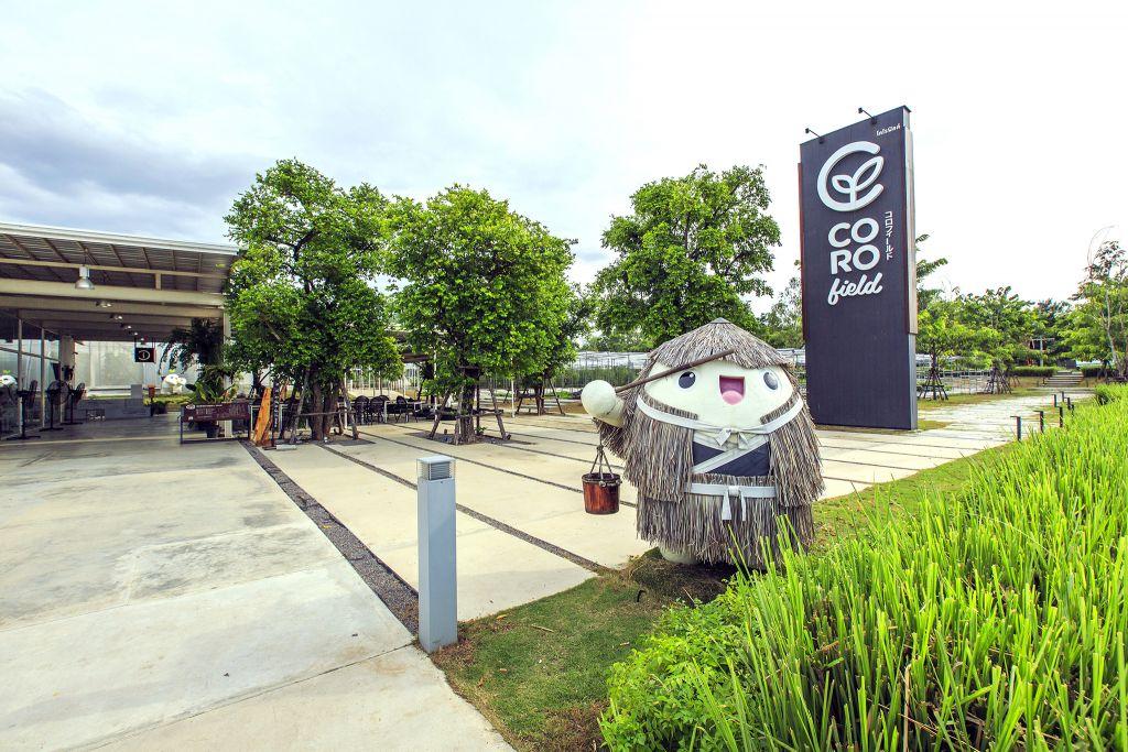 จุดเช็คอิน จังหวัดราชบุรี -Coro Field ฟาร์มออแกนิคส
