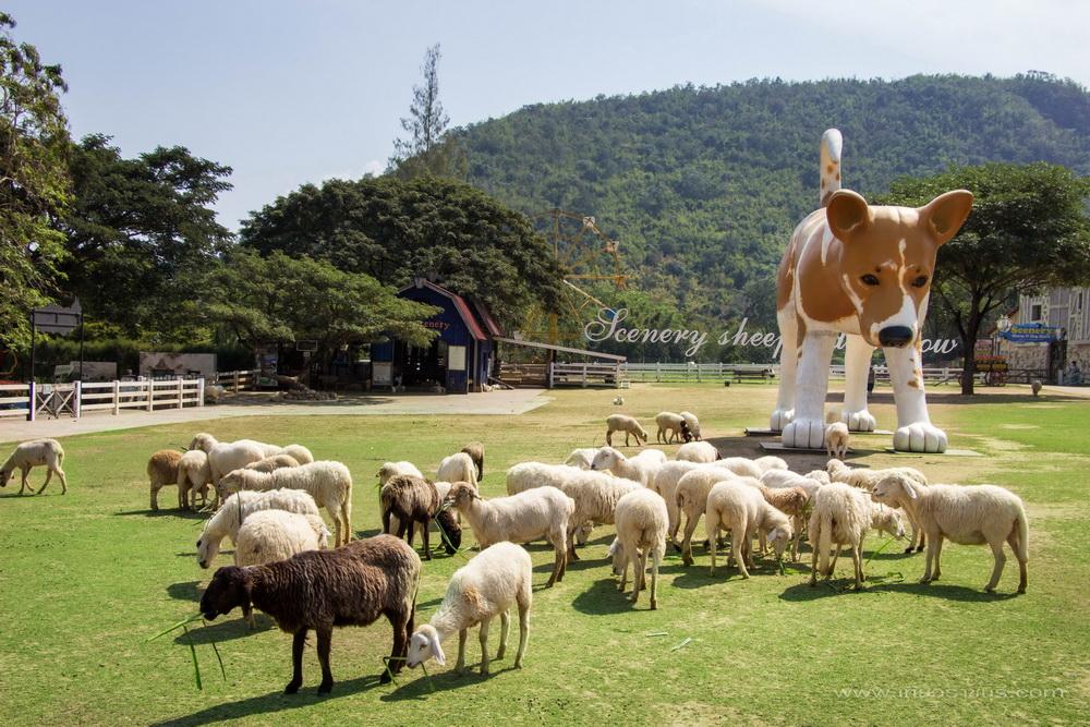 เที่ยว จังหวัดราชบุรี ครบรสในทุกบรรยากาศ จุดเช็คอิน ที่ใครมาแล้วจะไม่ผิดหวัง