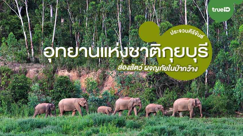 ท่องเที่ยว อุทยานแห่งชาติกุยบุรี ซาฟารี เป็นที่เดียวของเมืองไทยและแห่งเดียวของจังหวัดประจวบ