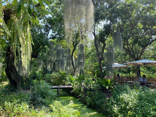 Natura Garden Cafe-สวนลิ้นจี่อายุร้อยปี