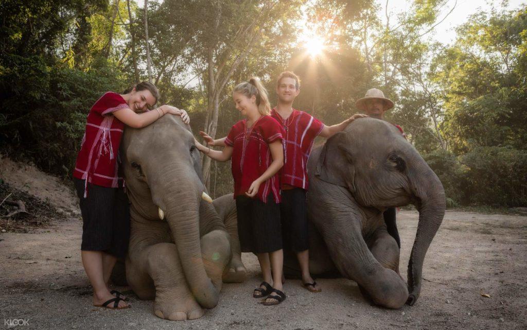 เที่ยวคนเดียวที่เชียงใหม่-ทัวร์ครึ่งวันไปปางช้าง