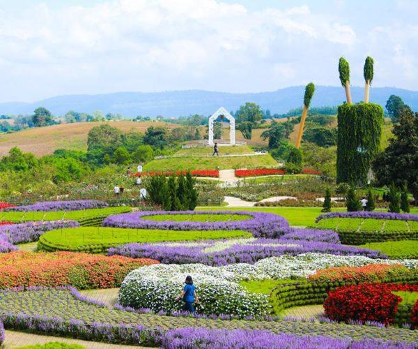 เที่ยวฟลอร่า พาร์ค วังน้ำเขียว บรรยากาศดีถ่ายรูปจุใจกับทุ่งดอกไม้สวย ๆ