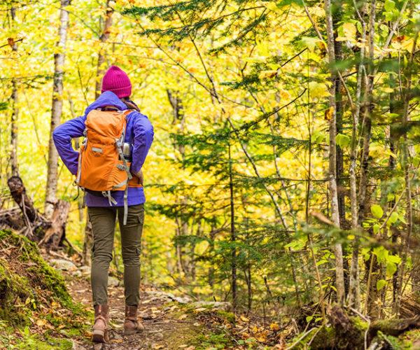 5 เคล็ดลับการเดินป่า เพื่อความปลอดภัยในการเดินทางและเที่ยวได้อย่างสนุก