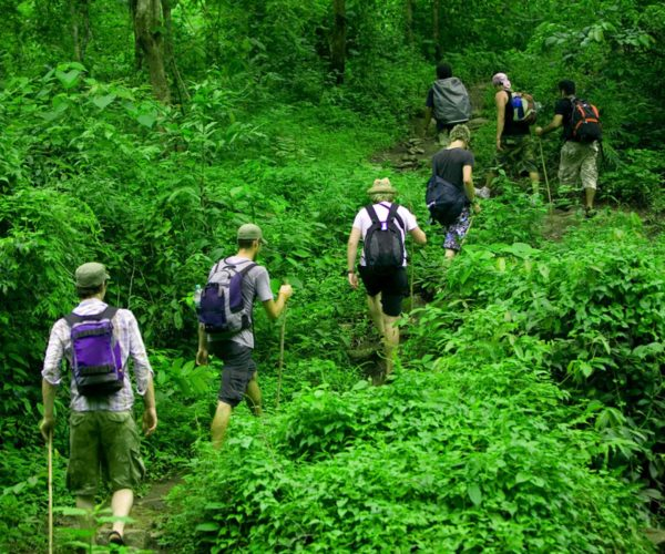 การเดินป่า อย่างไรให้ปลอดภัยและออกไปผจญภัยอย่างมีความสุข