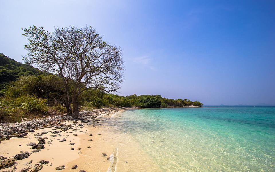เกาะขาม-หาดทรายขาวทะเลสีคราม