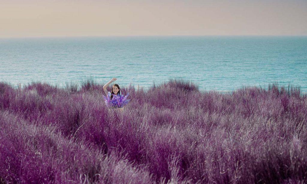 จุดเช็คอินพัทยา ทุ่งหญ้าสีม่วง-ทุ่งหญ้าสีม่วงที่มีความสวยสดใส
