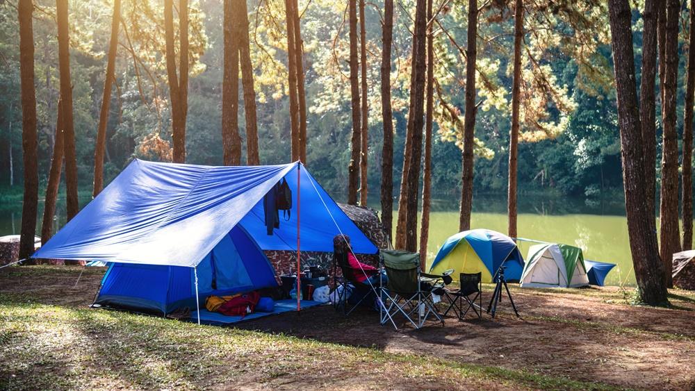 5 ข้อแนะนำใน การนอนพักในป่าหรือการไปตั้งแคมป์ สถานที่เต็มไปด้วยธรรมชาติ