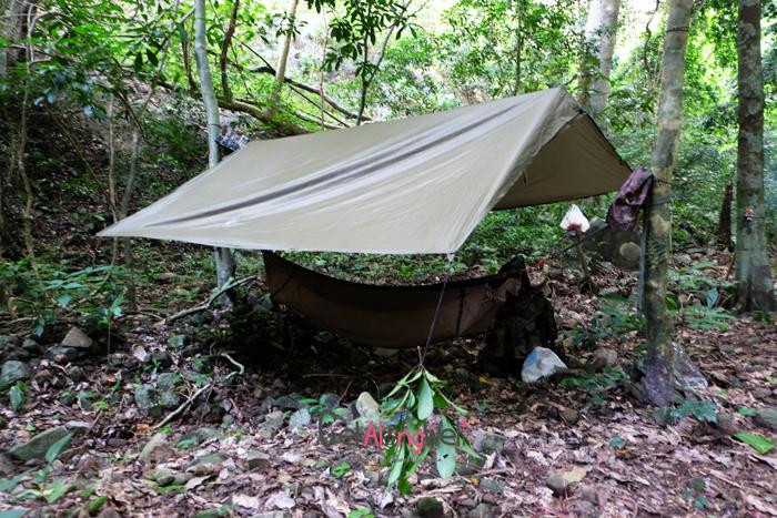 การนอนพักในป่า-ไม่นอนใกล้หน้าดิน