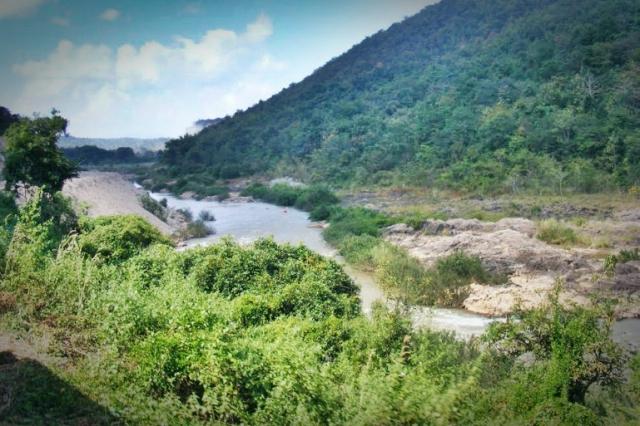 เที่ยวอุทยานแห่งชาติภูซาง-อุทยานแห่งชาติแม่ปืม
