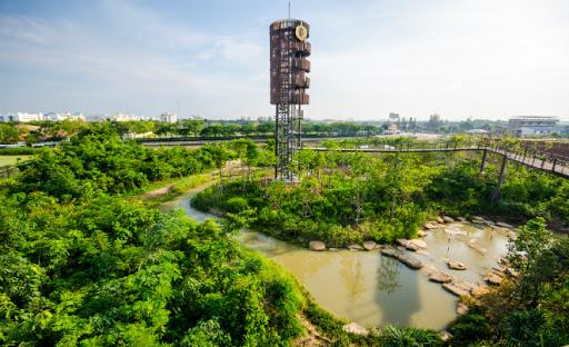 ป่ากลางกรุง ปอดของเหมืองหลวงที่ต้องไปสักครั้ง